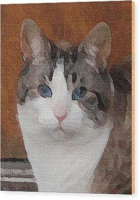 Fat Cats Of Ballard 3 Wood Print
