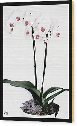 Favorite Gift Of Orchids Wood Print by Marsha Heiken