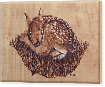 Wood Print featuring the pyrography Fawn by Ron Haist