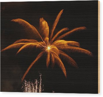Wood Print featuring the photograph Feather Of Light by Michael Canning