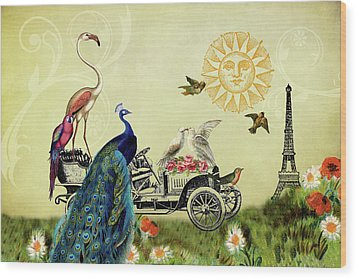 Feathered Friends In Paris, France Wood Print by Peggy Collins