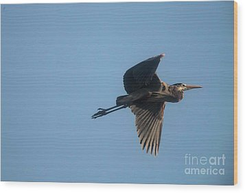 Wood Print featuring the photograph Feathering The Nest by David Bearden