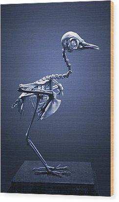 Featherless In Blue Wood Print by Joseph Westrupp