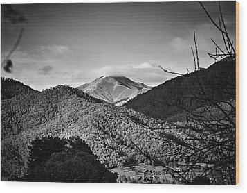 Feathertop Wood Print by Mark Lucey