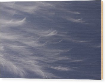 Wood Print featuring the photograph Feathery Sky by Shari Jardina