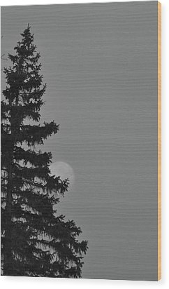 February Morning Moon Wood Print by Maria Suhr