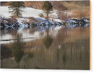 Wood Print featuring the photograph February Reflections by Karol Livote