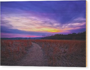 Wood Print featuring the photograph February Sunset And Path At Retzer Nature Center by Jennifer Rondinelli Reilly - Fine Art Photography