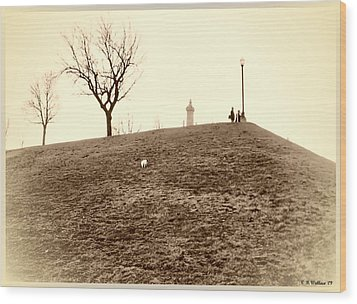 Wood Print featuring the photograph Federal Hill by Brian Wallace