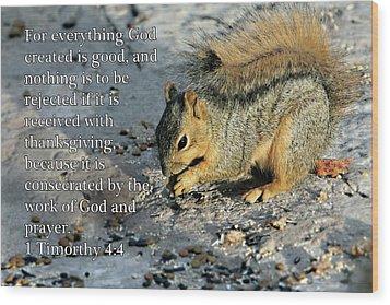 Feeding Squirrel 1timothy 4 V 4 Wood Print by Linda Phelps