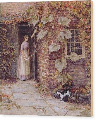 Feeding The Kitten Wood Print by Helen Allingham