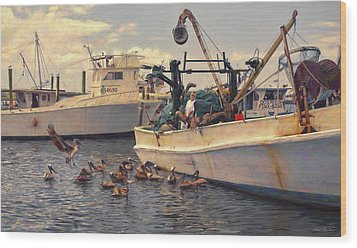Feeding The Pelicans Wood Print