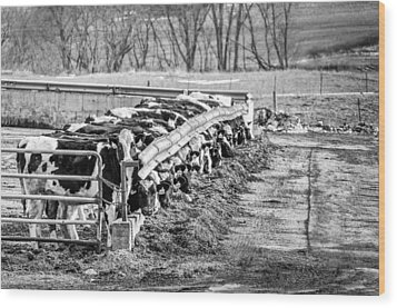 Feedlot Wood Print