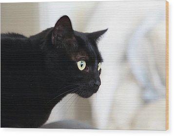 Feline On The Prowl Wood Print
