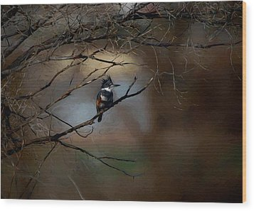 Wood Print featuring the digital art Female Belted Kingfisher 3 by Ernie Echols