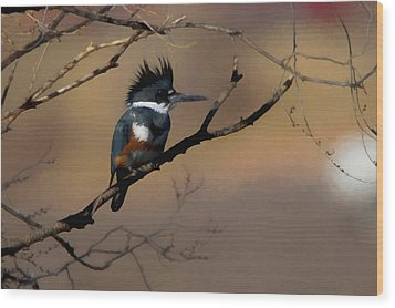 Wood Print featuring the digital art Female Belted Kingfisher by Ernie Echols