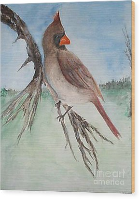 Wood Print featuring the painting Female Cardinal by Sibby S