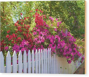 Fence Of Beauty Wood Print by Jeanette Oberholtzer