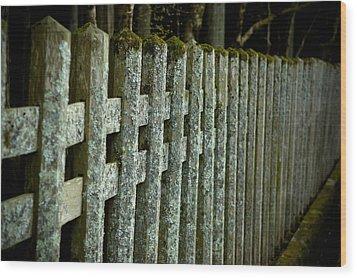 Fenced In Wood Print by Sebastian Musial