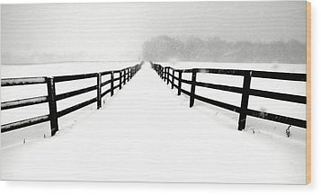 Fenced White Out Wood Print