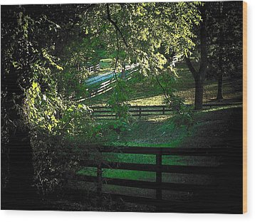 Fences On The Farm Wood Print
