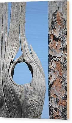 Fencework Wood Print