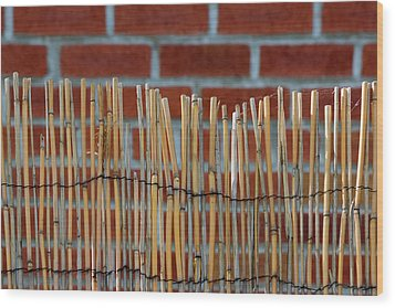 Fencing In The Wall Wood Print