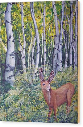 Fern Hollow Wood Print by Sandy Collier