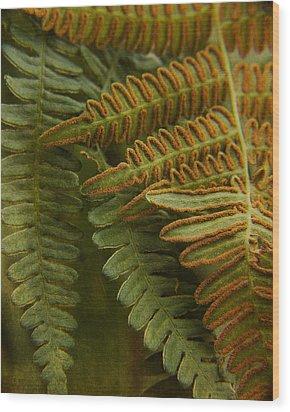 Fern In My Garden Wood Print
