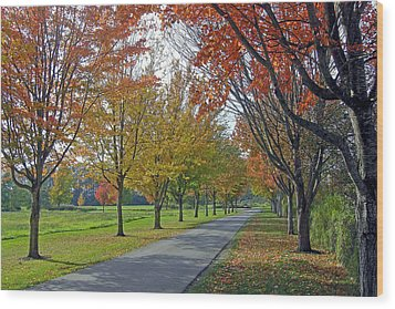 Ferndale Fall Colors Wood Print by Matthew Adair