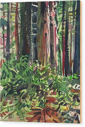 Ferns And Redwoods Wood Print by Donald Maier