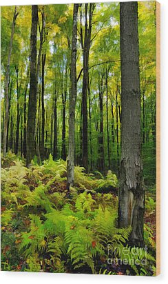 Ferns In The Forest - West Virginia Wood Print