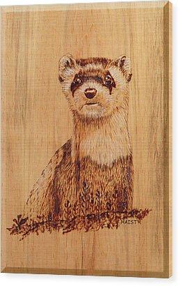 Ferret Wood Print by Ron Haist