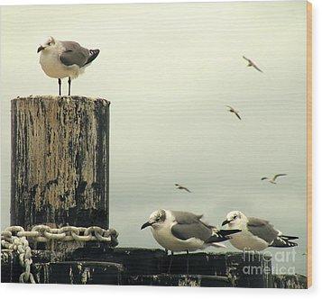Ferry Hypnosis Wood Print by Joe Jake Pratt