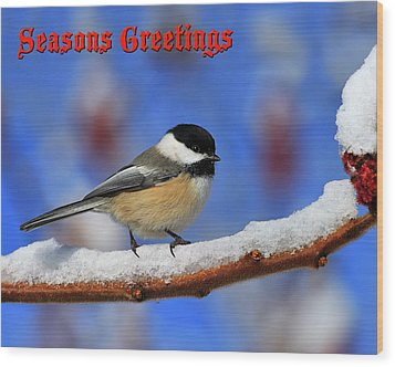 Wood Print featuring the photograph Festive Chickadee by Tony Beck
