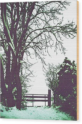 Field Gate Wood Print by Anne Kotan