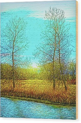 Field In Morning Light Wood Print