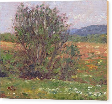 Field In Spring Wood Print by Michael Camp