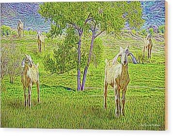 Field Of Baby Goat Dreams Wood Print by Joel Bruce Wallach