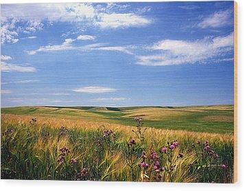 Field Of Dreams Wood Print by Kathy Yates
