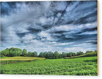Field Of Dreams One Wood Print by Steven Ainsworth