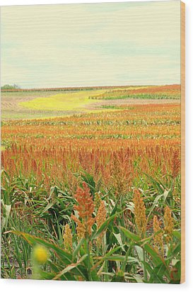 Field Of Gold Wood Print by James Granberry