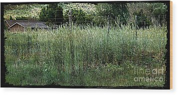 Field Of Grass Wood Print
