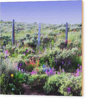 Field Of Wildflowers Wood Print by Karen Shackles