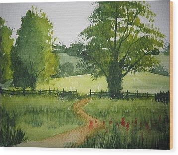 Fields Of Green Wood Print by Shirley Braithwaite Hunt