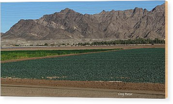 Fields Of Yuma Wood Print by Greg Patzer