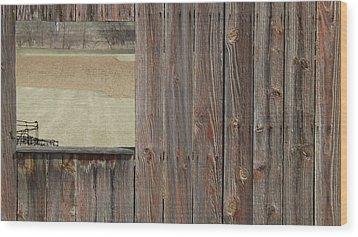 Fieldwindow #1 Wood Print by Don Koester