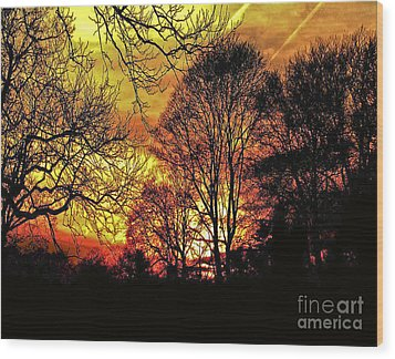 Fiery Red Sunset Wood Print by Carol F Austin