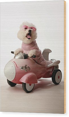 Fifi Is Ready For Take Off In Her Rocket Car Wood Print by Michael Ledray