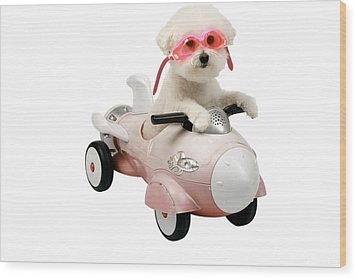 Fifi Loves Her Rocket Car Wood Print by Michael Ledray